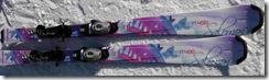 sallys 2009 skis
